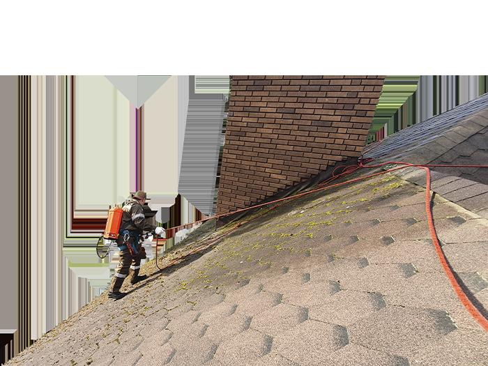 Очистка крыш от мха и грязного налёта